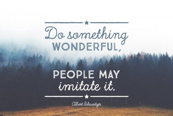 schweitzer-quote
